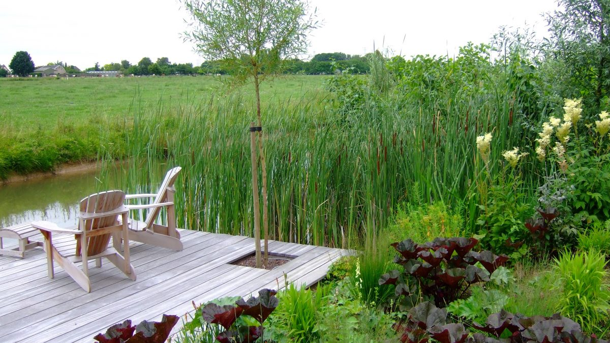 Foto uit de publicatie 'Poldertuin aan het water' in Home and Garden juli 2016