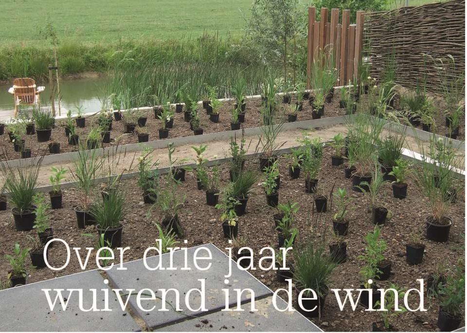 Foto uit publicatie over drie jaar wuivend in de wind' uit Home and Garden, mei 2012