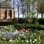 voorjaarsborder rond een natuurlijke vijver met veel tulpen, narcssen en vergeetmijnietjes met als achtergrond de oude tuinmuur en het kerkje van Velp