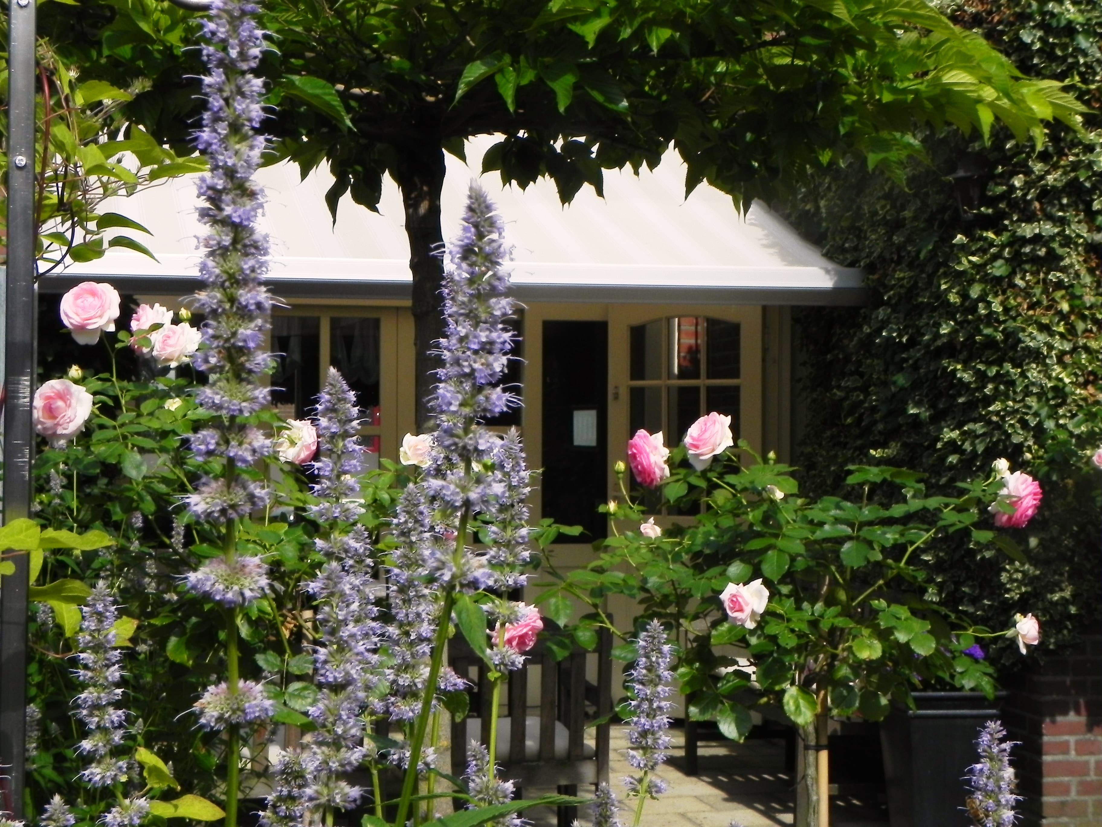 kleine tuin met een fijne uitstraling