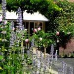 Een kleine tuin met terrasje tegen de achtergevel. de rozen en dropplanten zorgen voor een fijne sfeer.