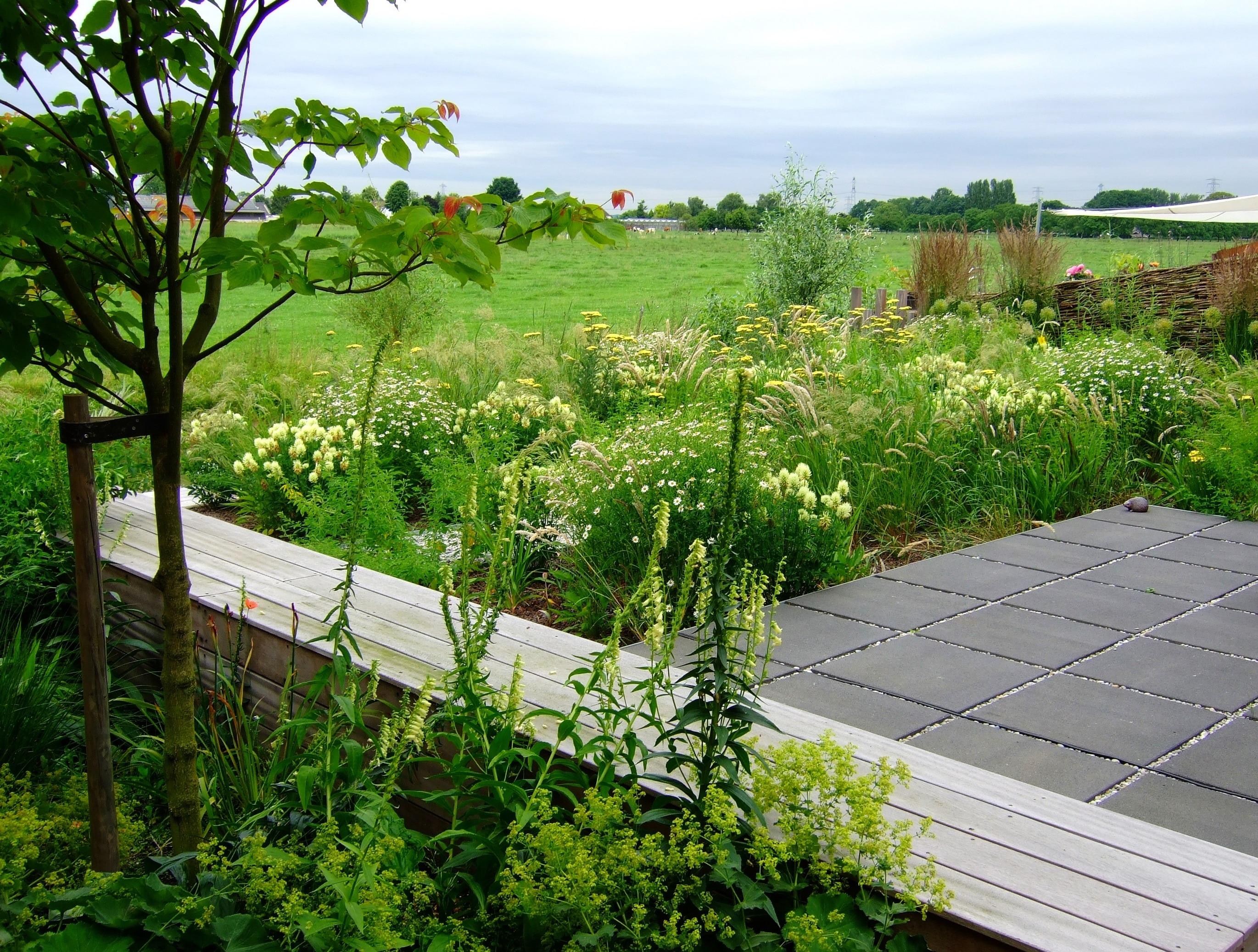 Het terras in de achtertuin is omgeven door natuurlijk for Tuin aanleggen nijmegen