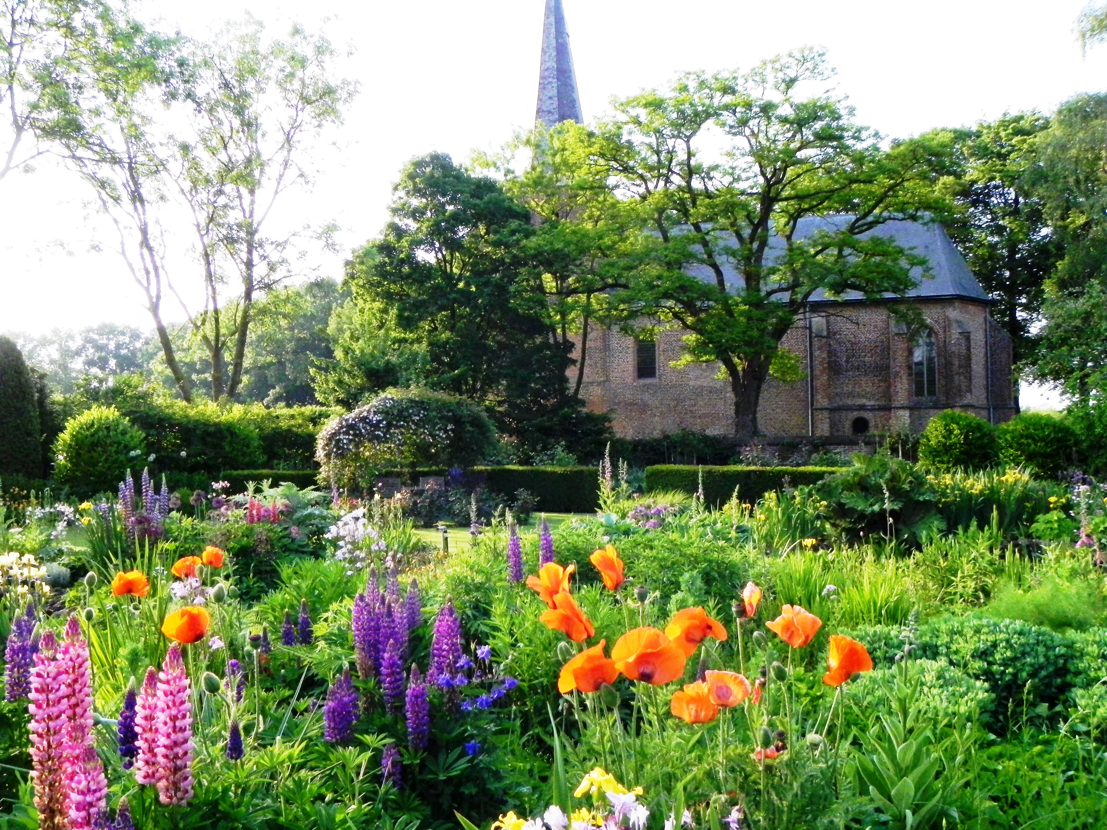 Kleurrijke border in oranje en paars tegen de achtergrond van het kerkje in Velp (NBr)