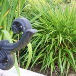 een klassieke smeedijzeren krul met het moderne siergras Hakenochloa vormt een mooi beeld