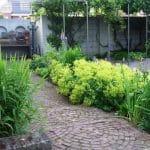 Een pad met een klassiek bestratingspatroon van boogjes en oop de achtergrond een pergoladak van moderne steigerpalen. het pad wordt geflankeerd door een rijk begroeide rand van siergrassen en vrouwenmantel