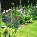 Een rijkbloeiende border met romantisch ogende planten zoals zachtroze pioenen, Hosta's, sieruien en vrouwenmantel