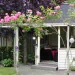 Een zeshoekig wit tuinhuisje begroeid met felroze klimrozen. Een donkerbladige Prunus versterkt de kleur van de rozen.