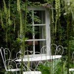 Een wit elegant tuinset past samen met de hoge witte aren van Actaea rubifolia 'Blickfang' goed bij het door groen omgeven venster