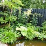 weelderig groene beplanting passend bij water langs de vijver
