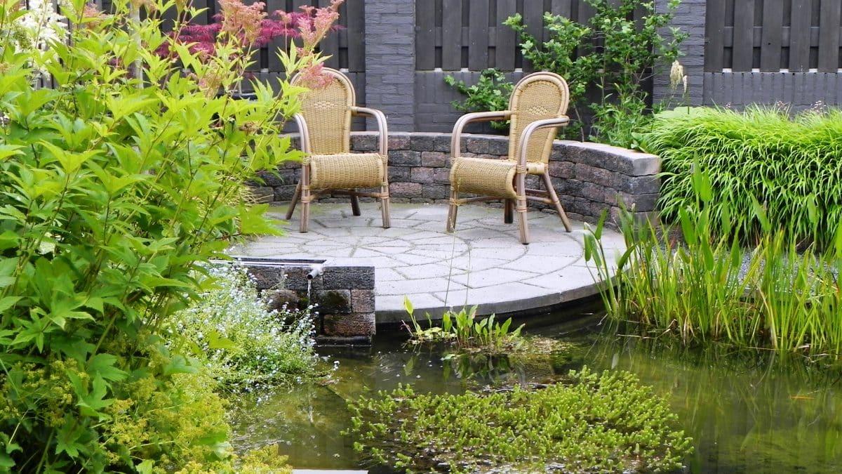 Ontwerp Kleine Tuin : Kleine tuin mooie tuin deel oxalis tuinontwerp