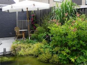 klein terrasje aan het water met weelderige oeverbeplanting van de vijver