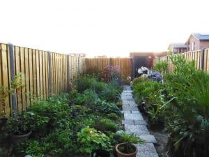 de grenzen van deze tuin die nog moet worden aangepast, zijn onprettig zichtbaar.